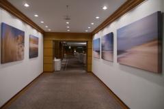 art place 6