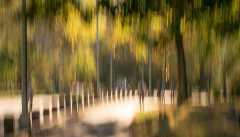 new york central park morning walk