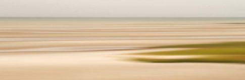 cape cod skaket beach ebb dune